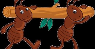 La hormigas laboriosas